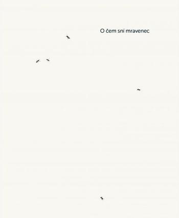 O čem sní mravenec