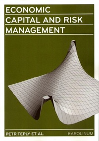 Economic Capital and Risk Management