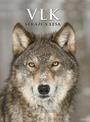 Vlk. Strážca lesa