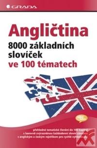 Angličtina - 8000 základních slovíček ve 100 tématech