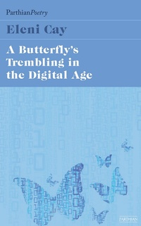The Butterfly's Tremblings in the Digital Age
