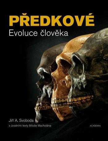 Předkové. Evoluce člověka