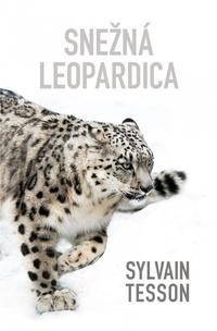 Snežná leopardica