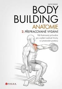 Bodybuilding. Anatomie