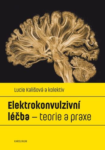 Elektrokonvulzivní léčba - teorie a praxe