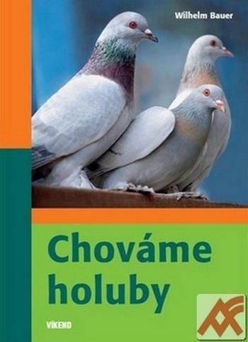 Chováme holuby