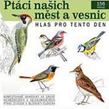 Ptáci našich měst a vesnic