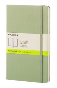 Zápisník tvrdý čistý zelený L
