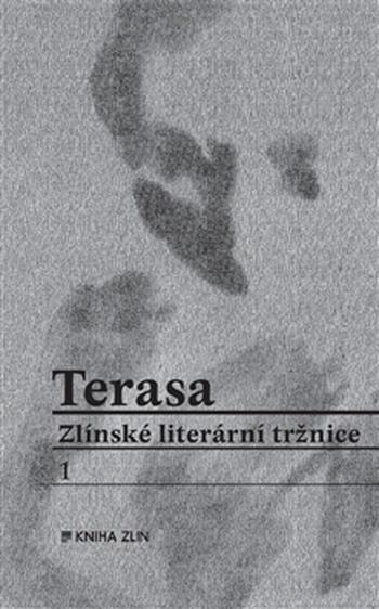 Terasa Zlínské literární tržnice I.