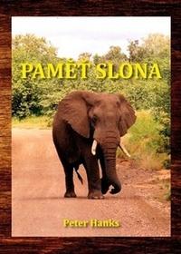 Paměť slona