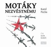 Motáky nezvěstnému - 3CD MP3 (audiokniha)