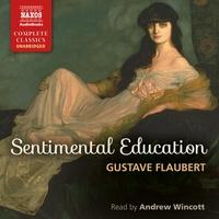 Sentimental Education (EN)