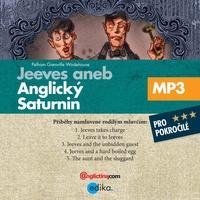 Jeeves aneb anglický Saturnin (EN)