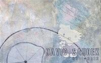 David Saudek 2011-2012