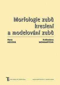 Morfologie zubů