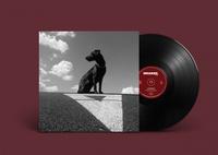 Pohybliví v nehybnom - LP