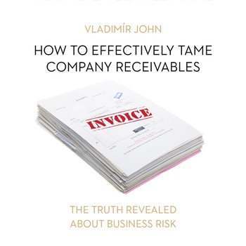 How to effectively tame company receivables (EN)