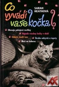 Co vyvádí vaše kočka