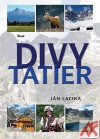 Divy Tatier