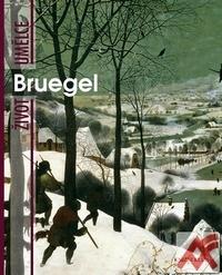 Bruegel. Život umělce