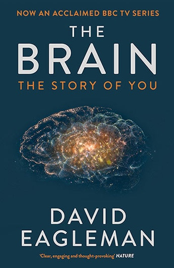 The Brain. The Story of You