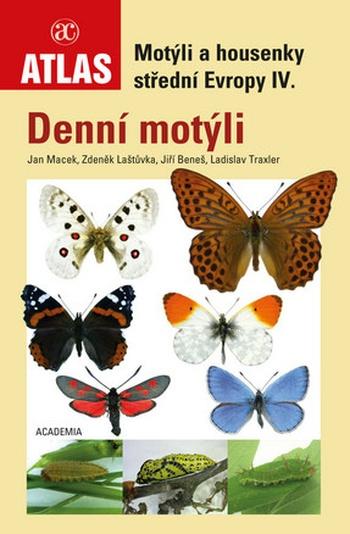 Denní motýli
