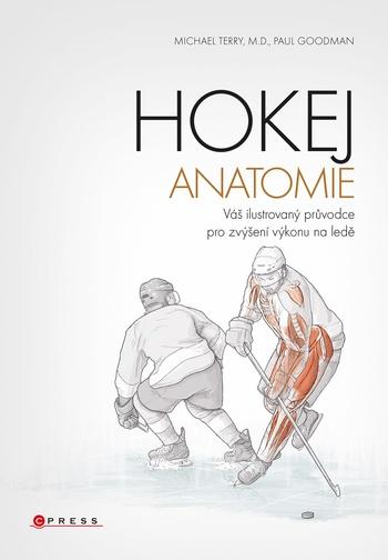 Hokej - anatomie