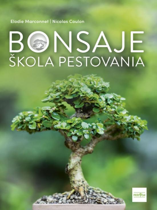 Bonsaje - škola pestovania