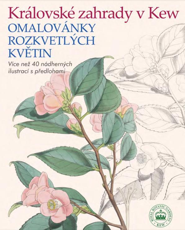 Královské zahrady v Kew. Omalovánky rozkvetlých květin