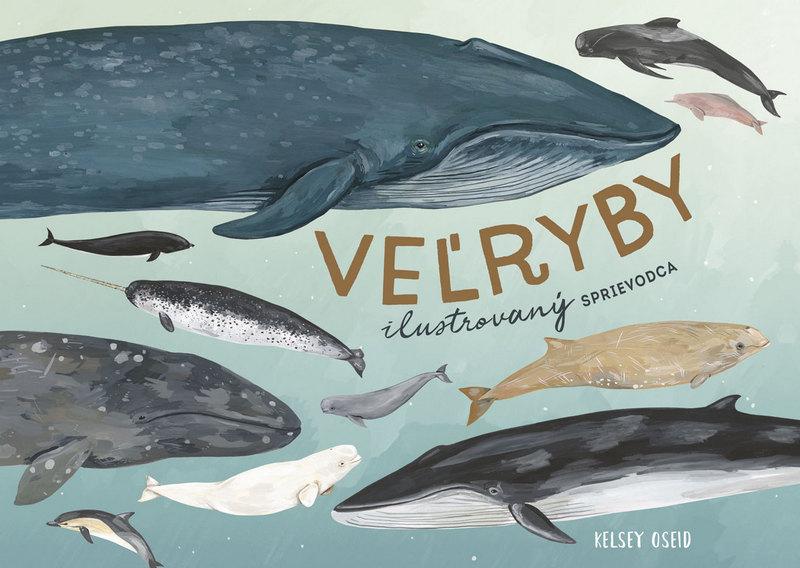 Veľryby - ilustrovaný sprievodca