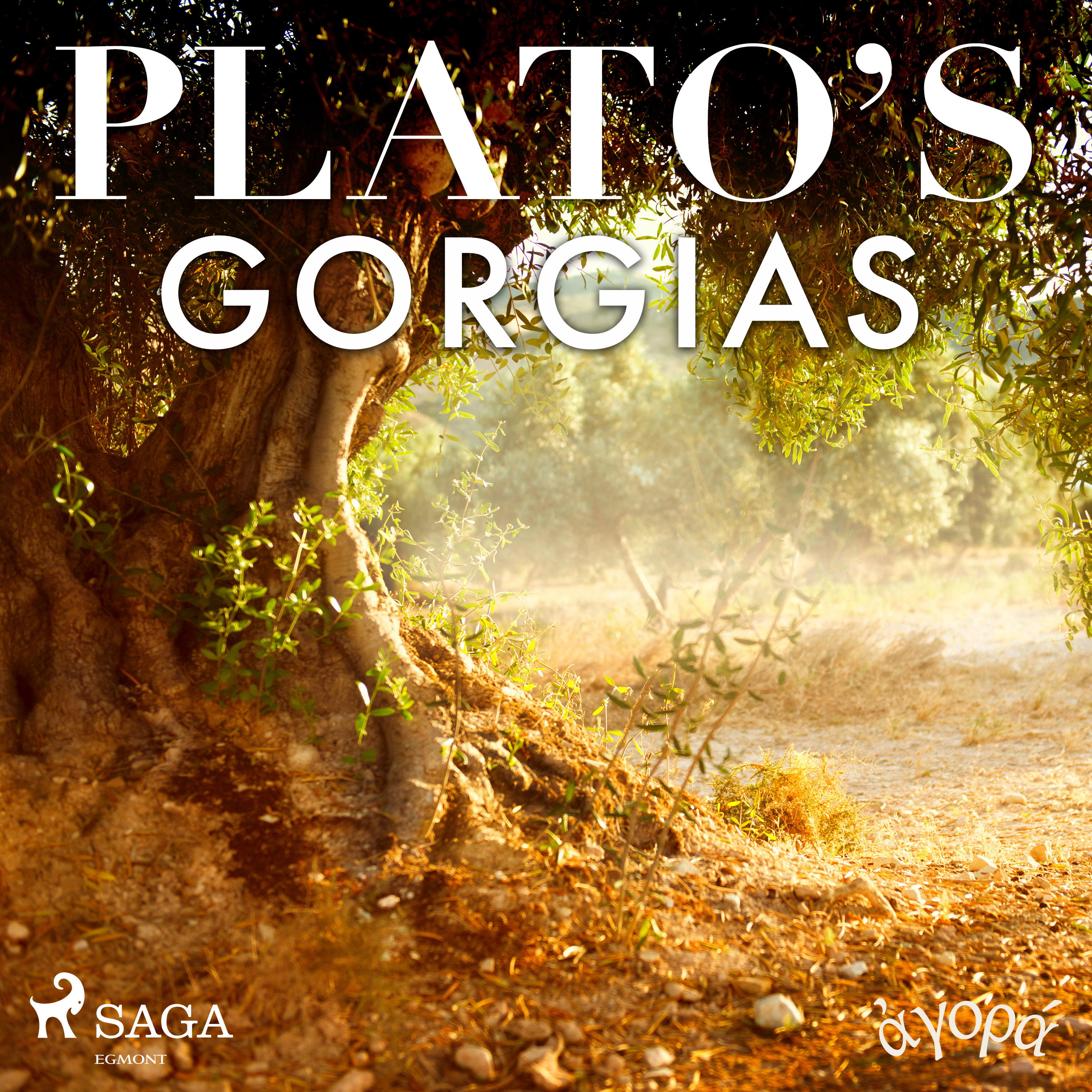 Plato's Gorgias (EN)